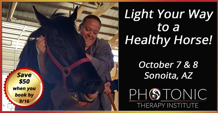 Introduction To Equine Light Therapy Photonic Therapy