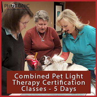 Pet Combo Certification – Photonic Therapy Institute